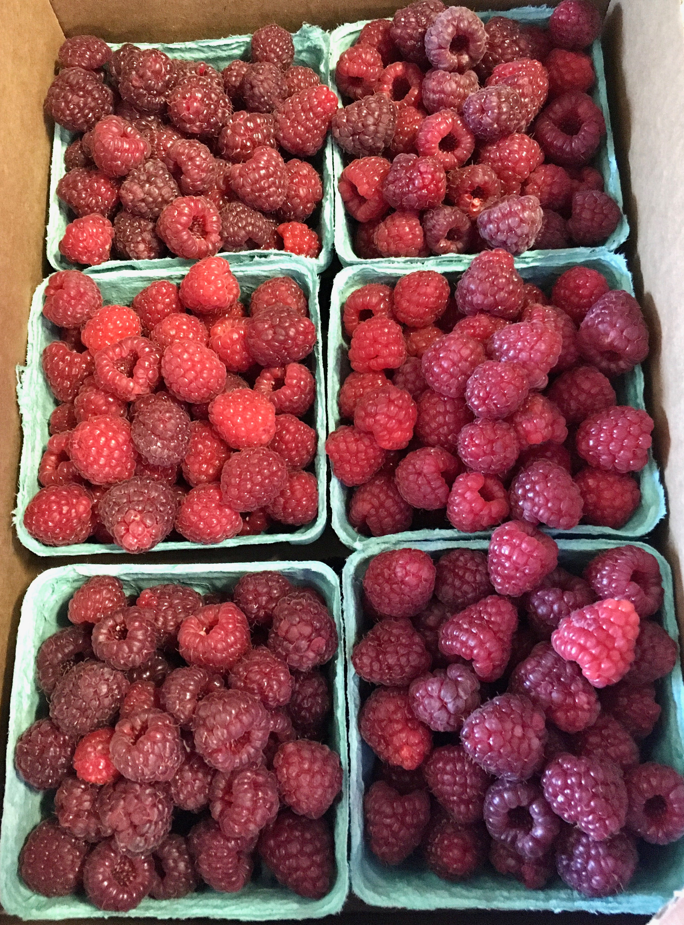6 For $20 Raspberry Special