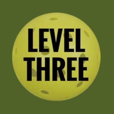 Level 3 Beginner Clinic