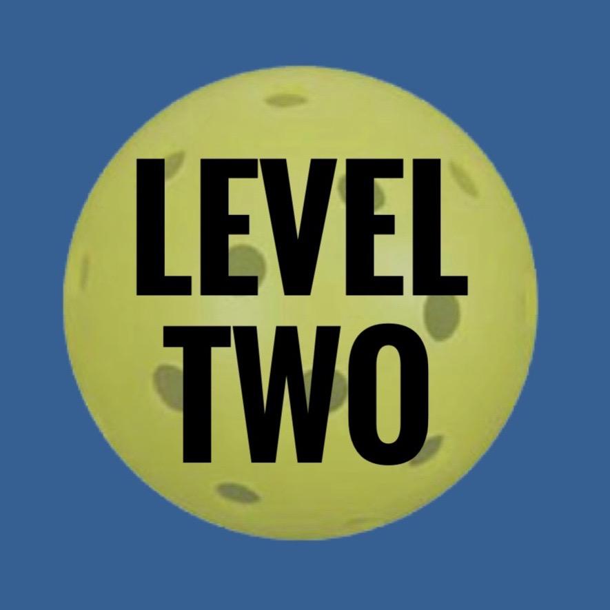 Level 2 Beginner Clinic