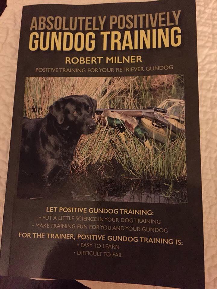 Hunting Dog Training Videos