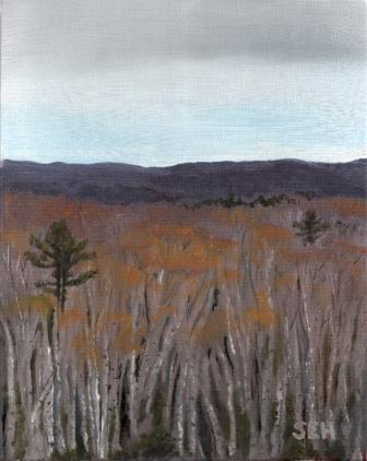 Birch View Oil Painting