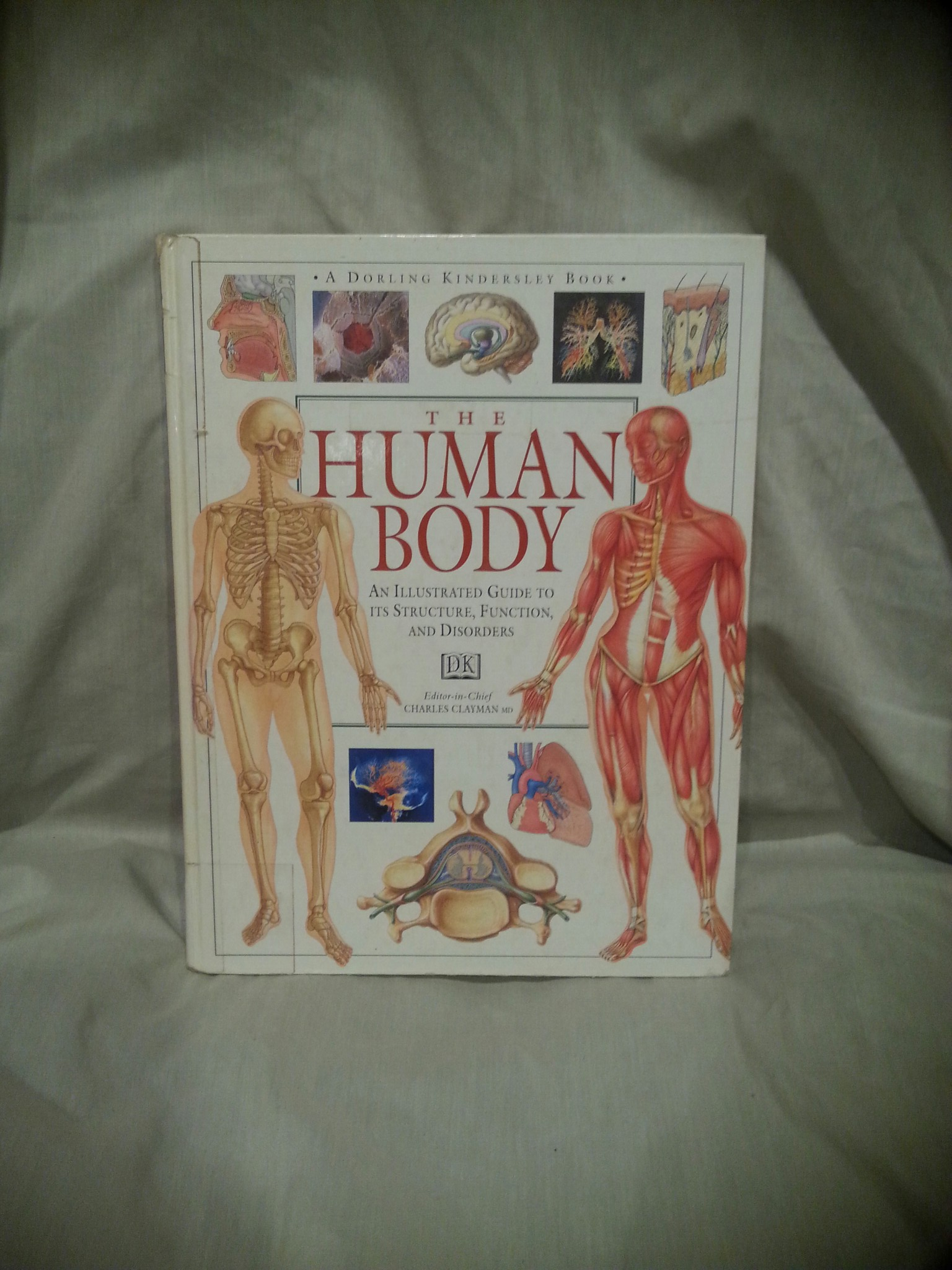 Human Body An Illustrated Guide To Its Structure Function And