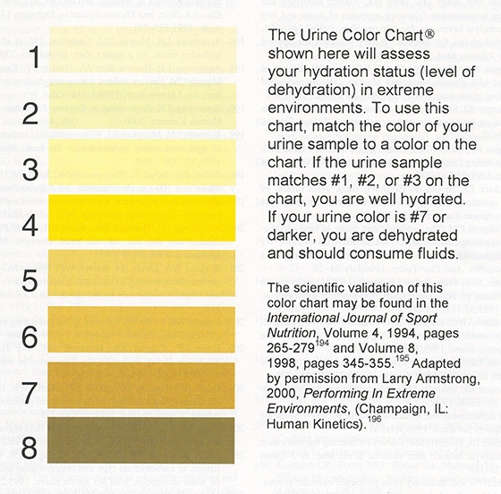 Urine Color Pocket Charts