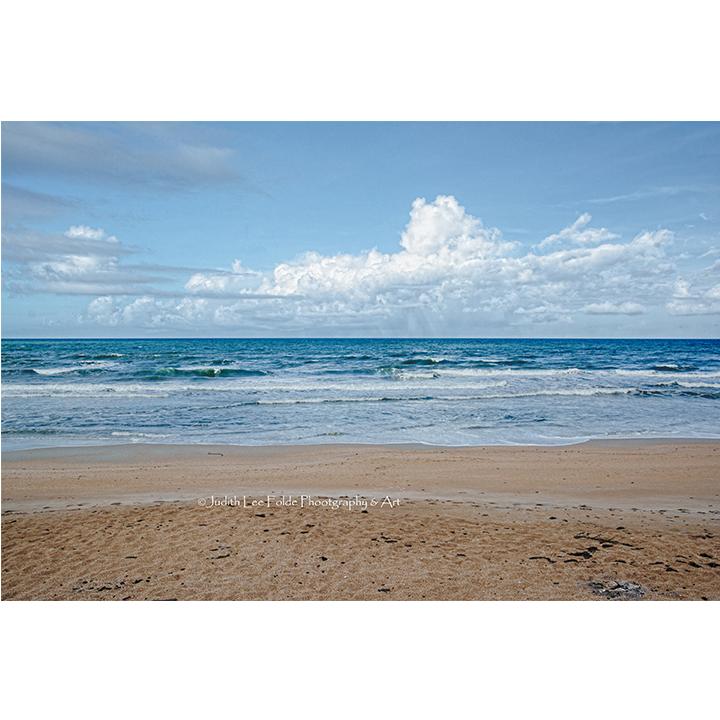 Beverly Beach Beauty