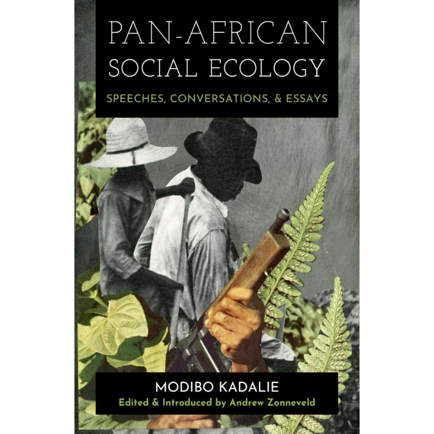 Kadalie, PAN-AFRICAN SOCIAL ECOLOGY
